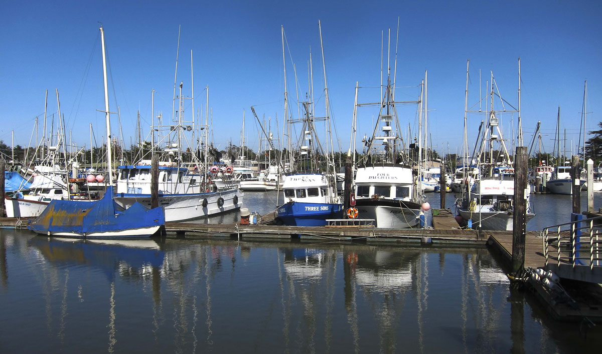 moss landing Private charters and open party sportfishing out of moss landing, ca.
