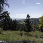 bwr-southern-utah-landscape
